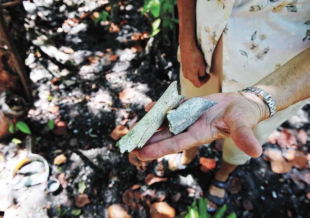 Bone fragments found at the Marco Gonzalez Maya Site. Photo © Lebawit Lily Girma.