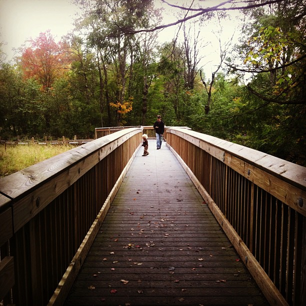 An adult and child walk along a raised wooden trail scattered with leaves.