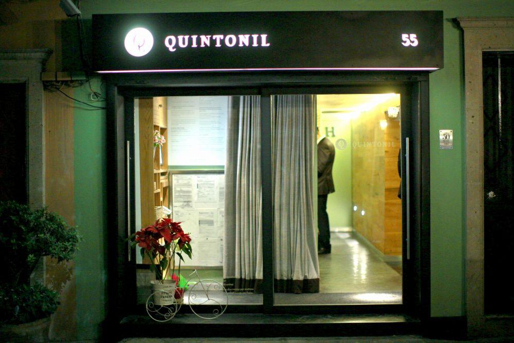 Quintonil: A Portrait of Gastronomic Excellence