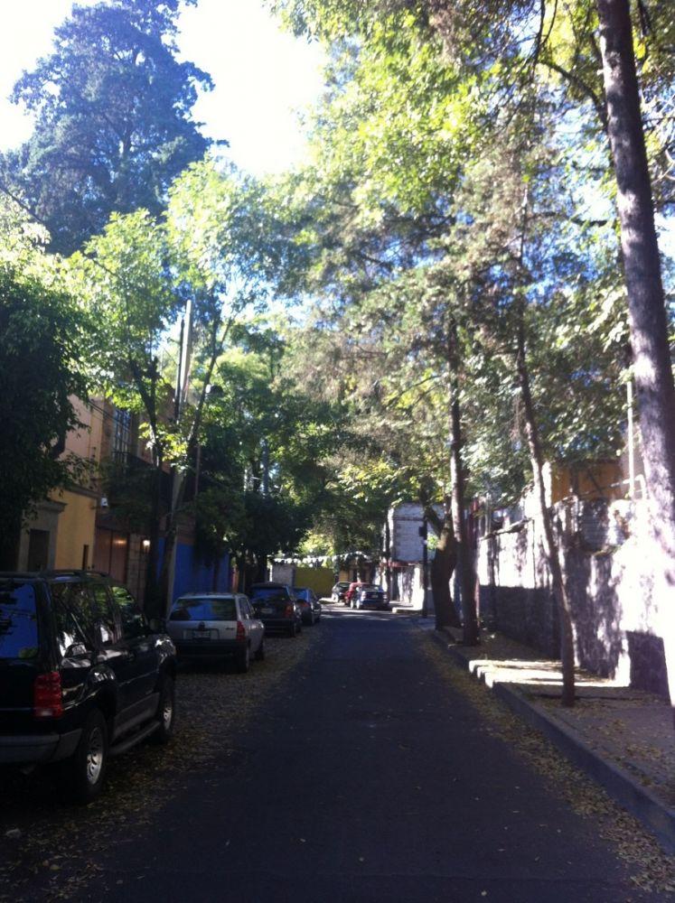 Coyoacan's alleys