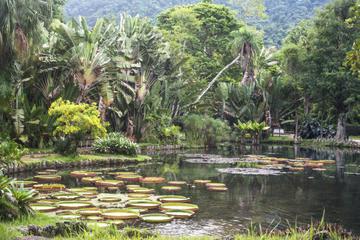 January Ecological Park