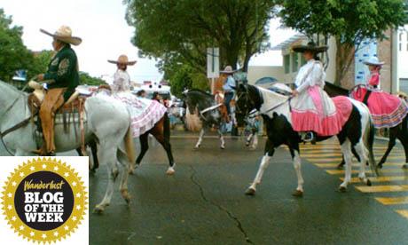 Mariachi Rodeo (Swarupa)