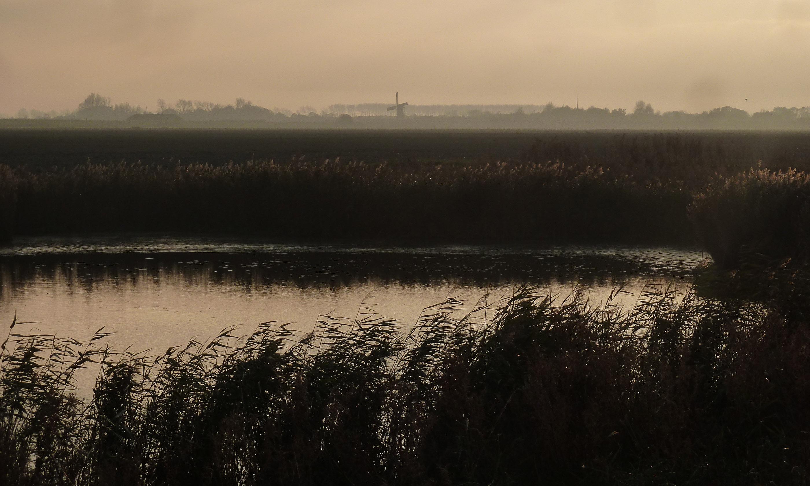 Norfolk landscape (Helen Moat)