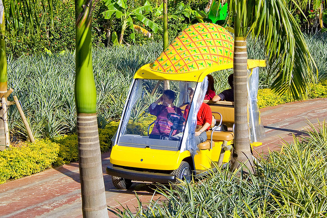 Nago Pineapple Park car (photoL butterforfilm/flickr)