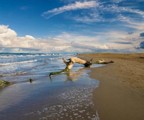 Delta de l-Ebre Catalonia Magical Landscape