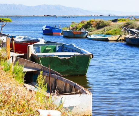 Delta Ebro river boats