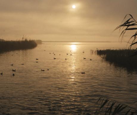 Delta Ebro Sunrise