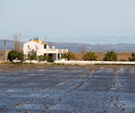 Delta Ebro Houses