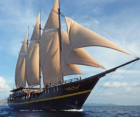 Cruises Travel Inspiration
