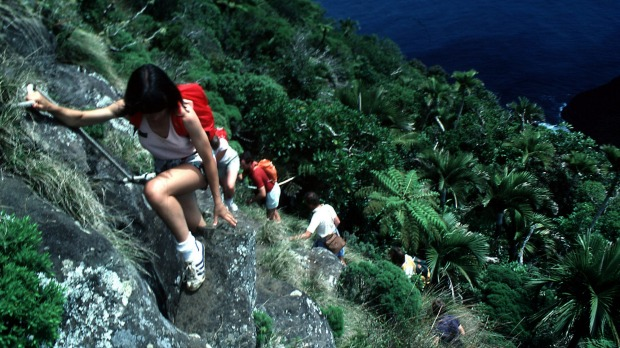 Steep descent: Climbing Mount Gower on Lord Howe Island.