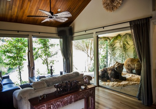 Feel at one with nature at Jamala Wildlife Lodge.
