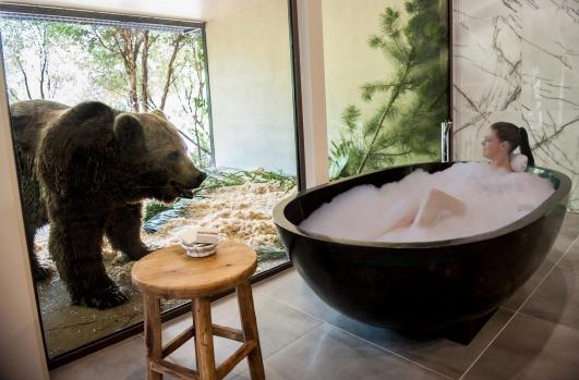 Making a splash at Jamala Wildlife Lodge.