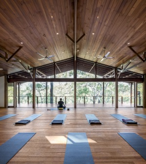 Treetop room: The yoga and meditation sessions on offer are all optional.
